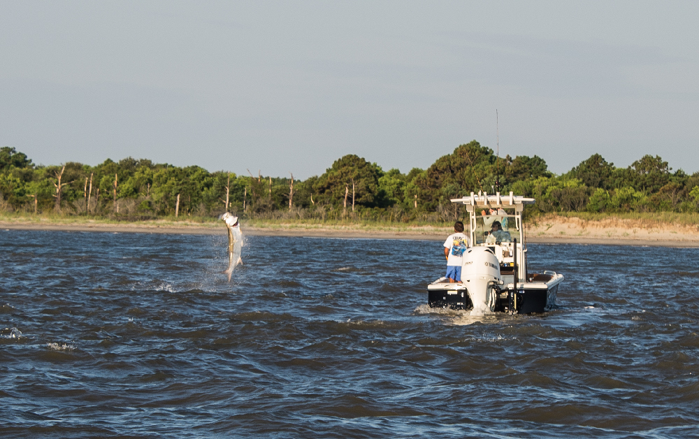 Lowcountry-Tarpon-Tournament-Scout-01